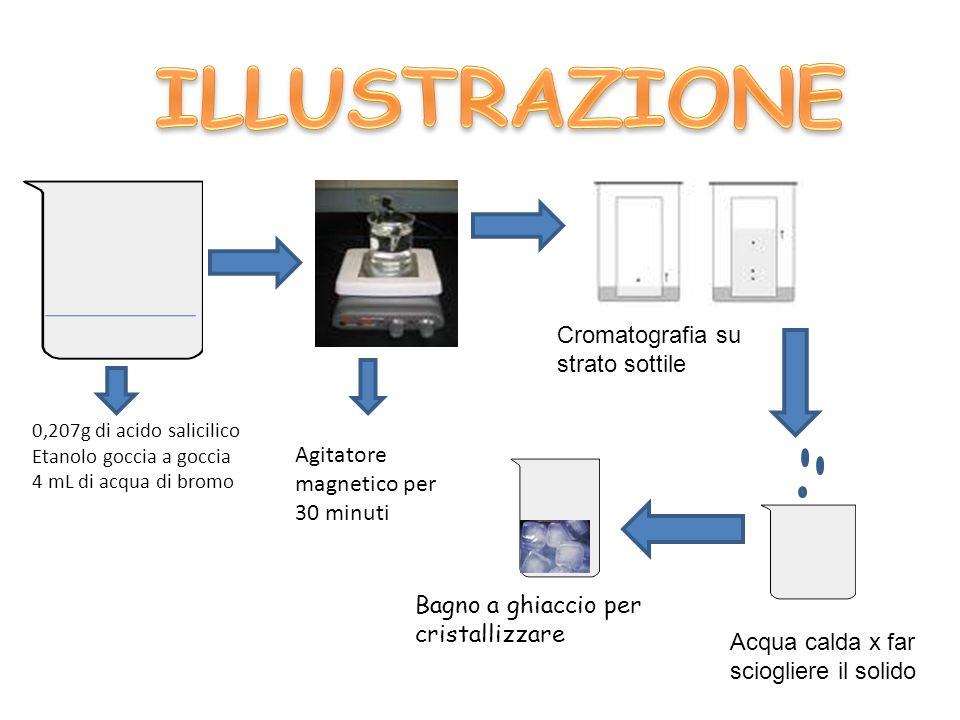 ILLUSTRAZIONE Cromatografia su strato sottile