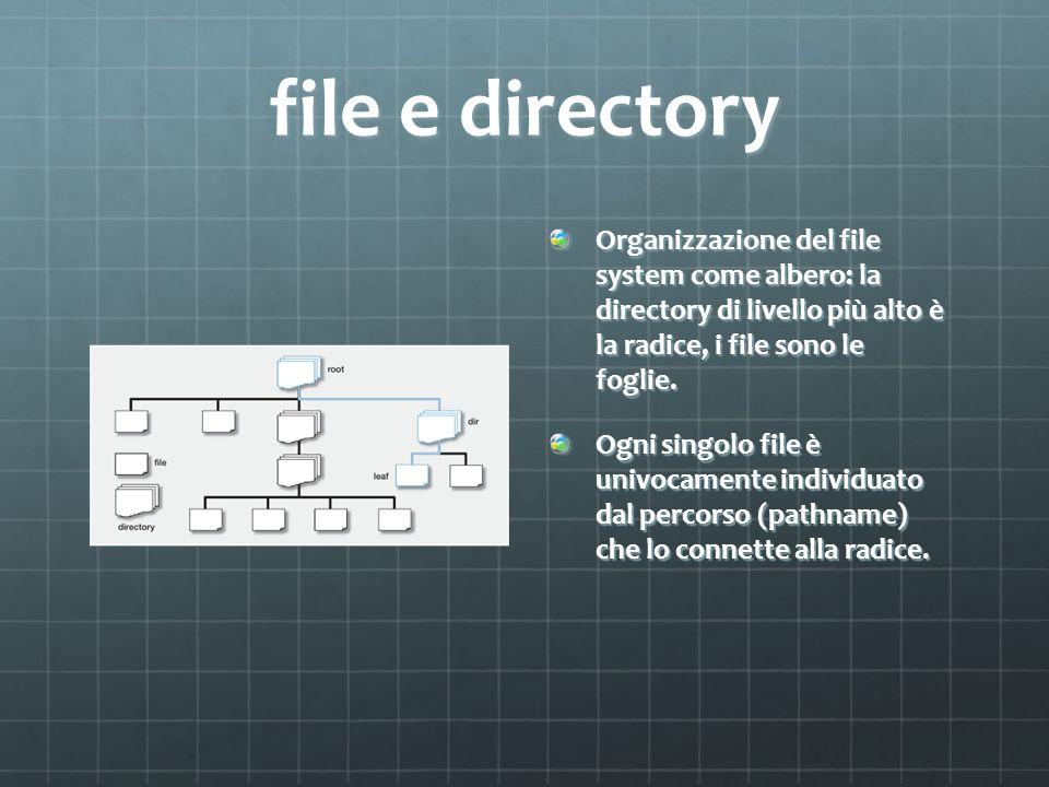 file e directory Organizzazione del file system come albero: la directory di livello più alto è la radice, i file sono le foglie.