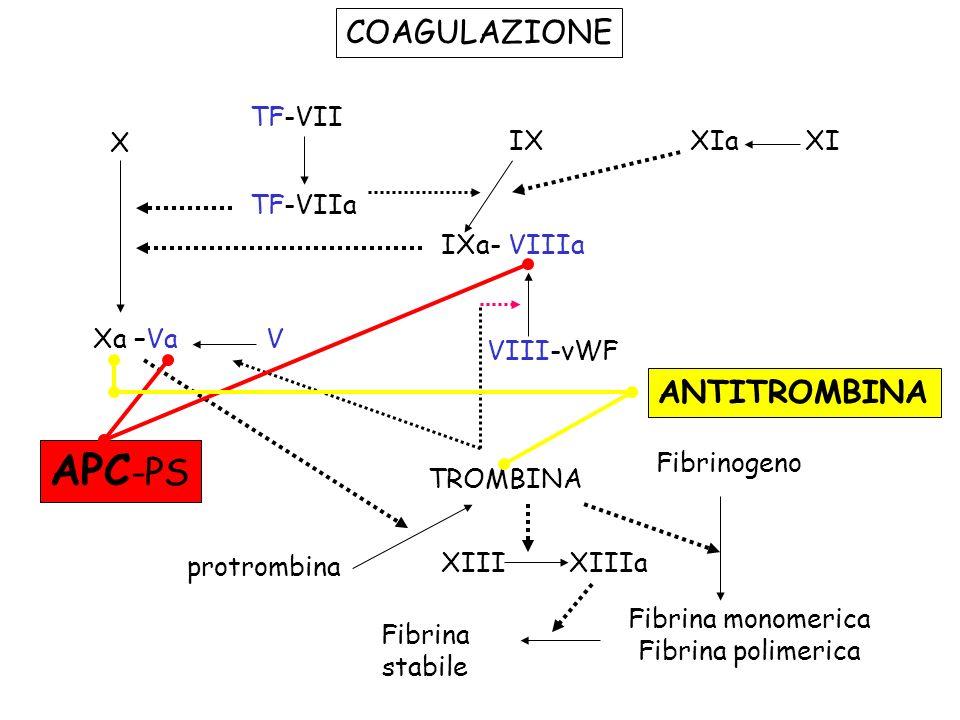 APC-PS COAGULAZIONE ANTITROMBINA TF-VII X IX XIa XI TF-VIIa IXa- VIIIa