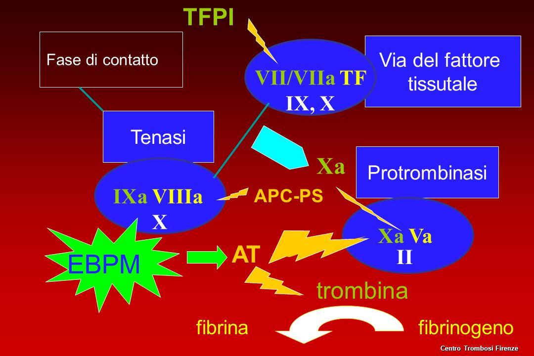 EBPM TFPI Xa AT trombina VII/VIIa TF IX, X IXa VIIIa X Xa Va II