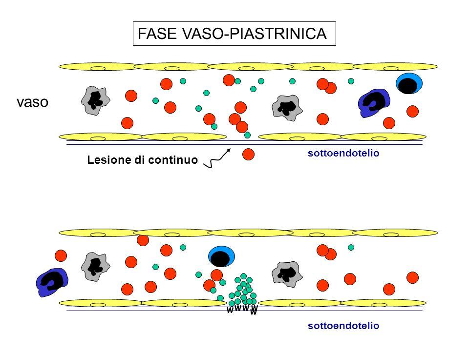 FASE VASO-PIASTRINICA