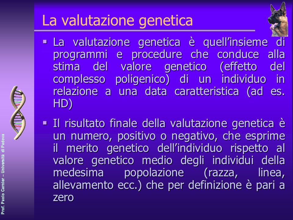 La valutazione genetica