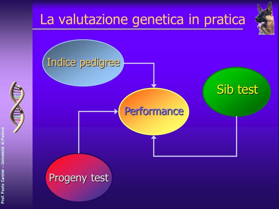 La valutazione genetica in pratica