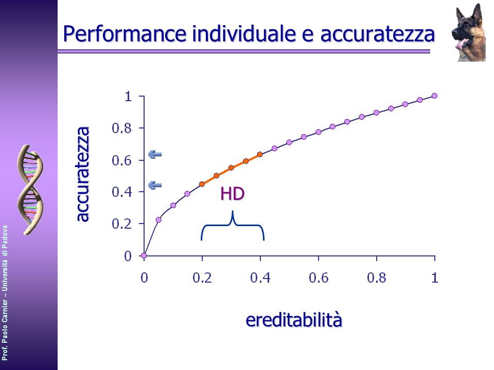 Performance individuale e accuratezza