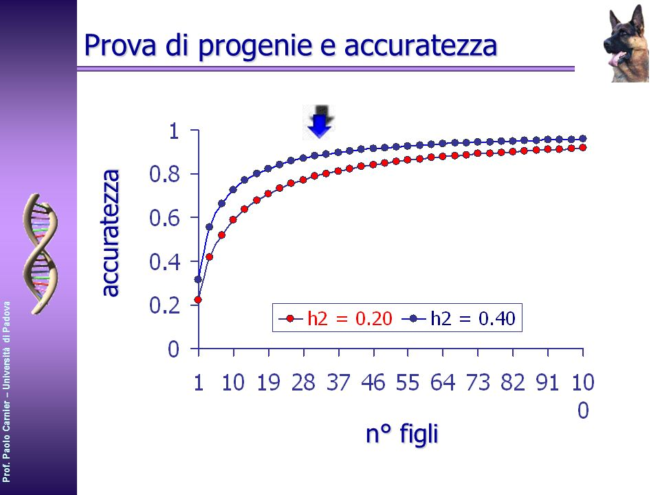 Prova di progenie e accuratezza