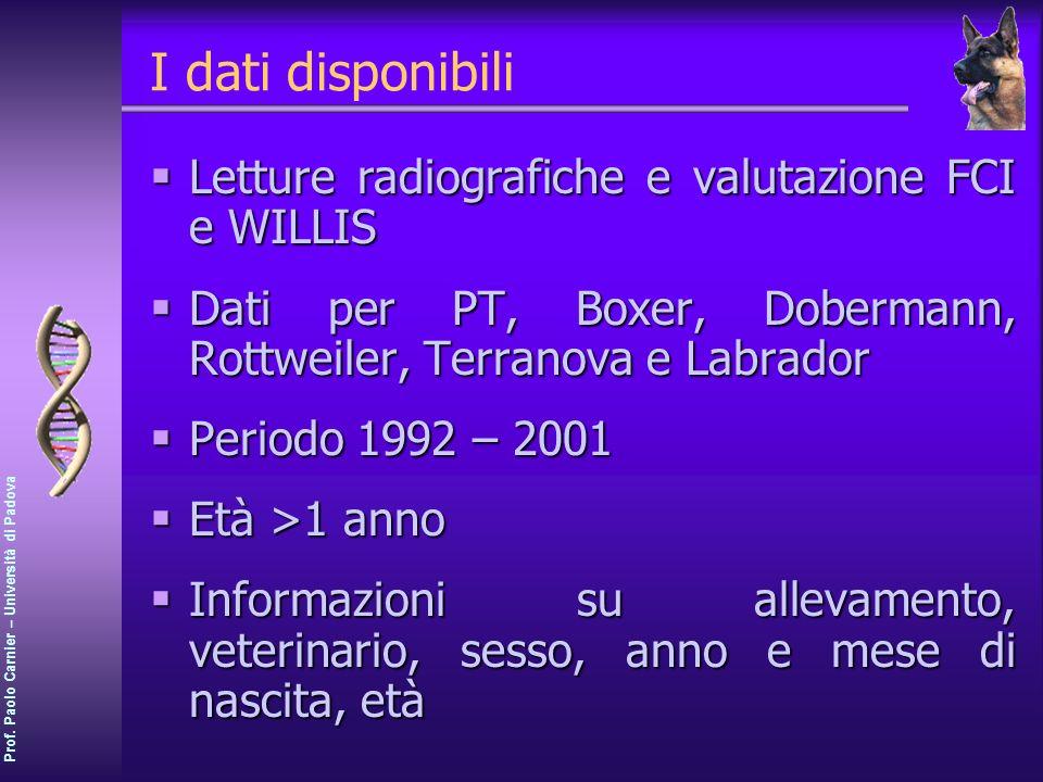 I dati disponibili Letture radiografiche e valutazione FCI e WILLIS