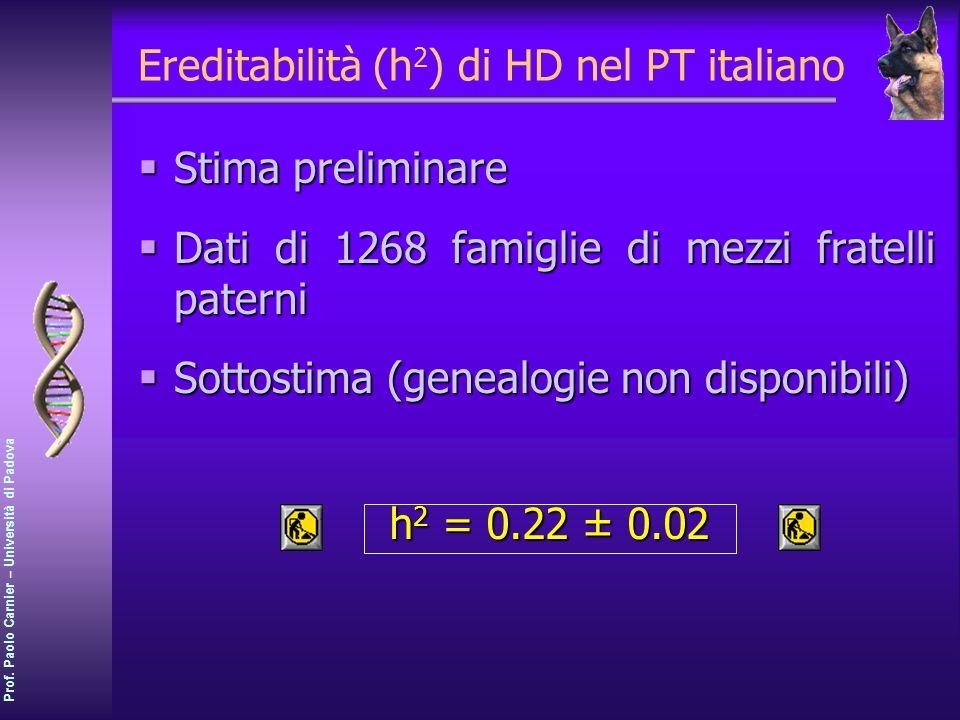 Ereditabilità (h2) di HD nel PT italiano