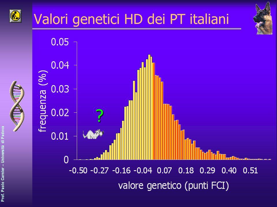 Valori genetici HD dei PT italiani
