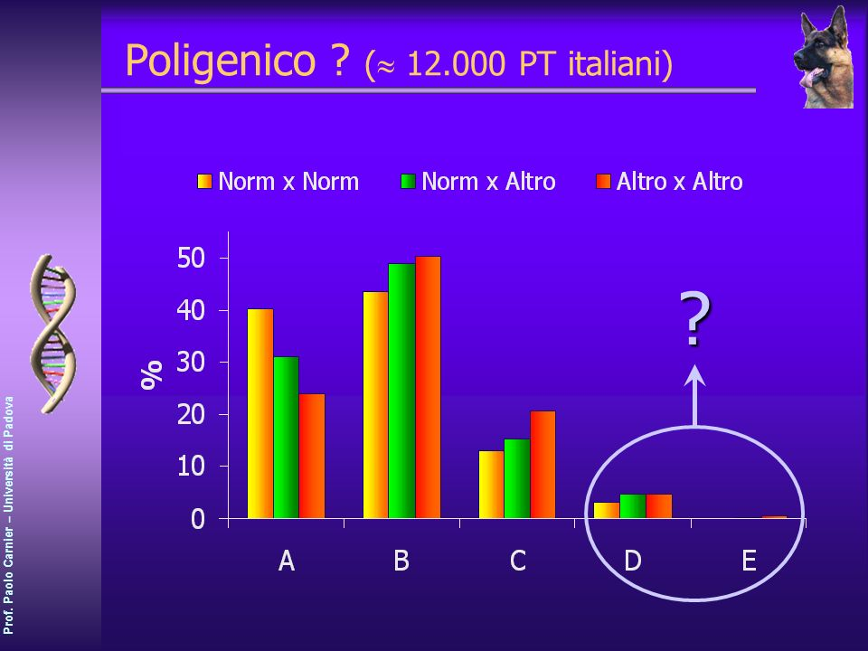 Poligenico ( 12.000 PT italiani)