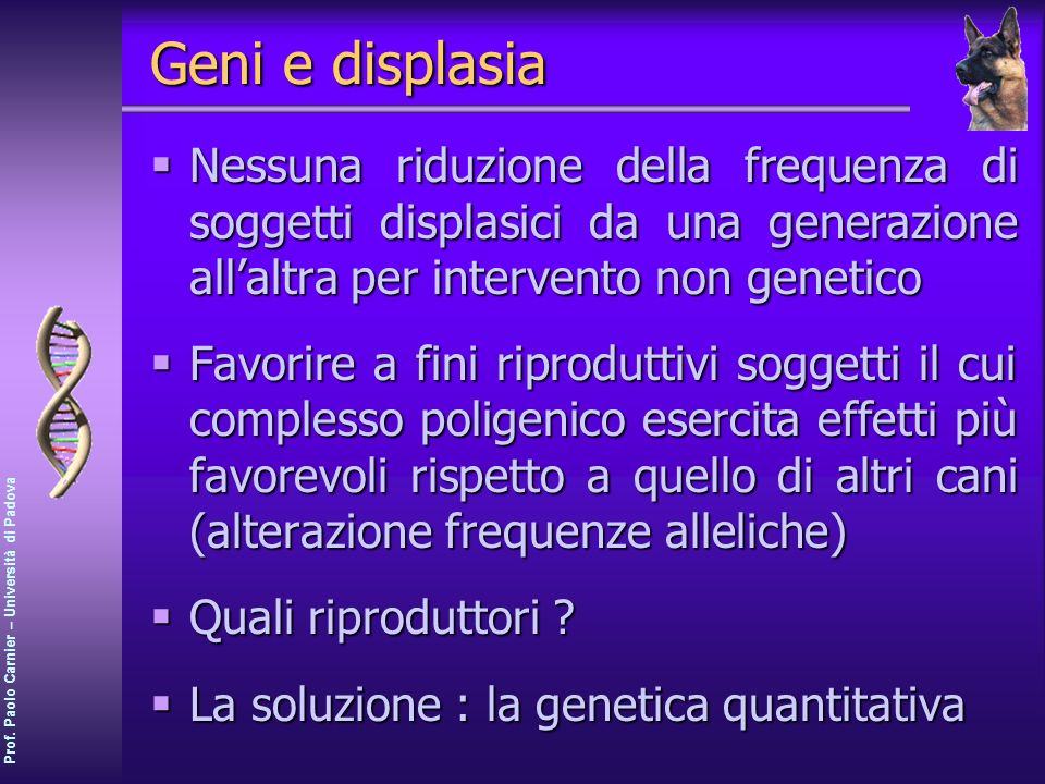 Geni e displasia Nessuna riduzione della frequenza di soggetti displasici da una generazione all'altra per intervento non genetico.