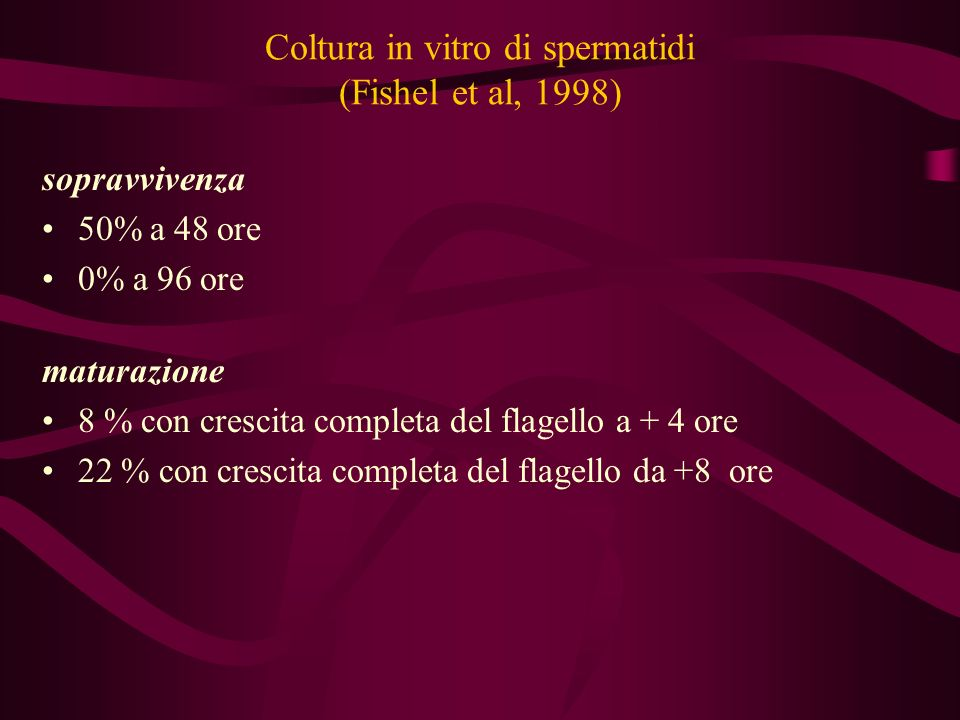 Coltura in vitro di spermatidi (Fishel et al, 1998)