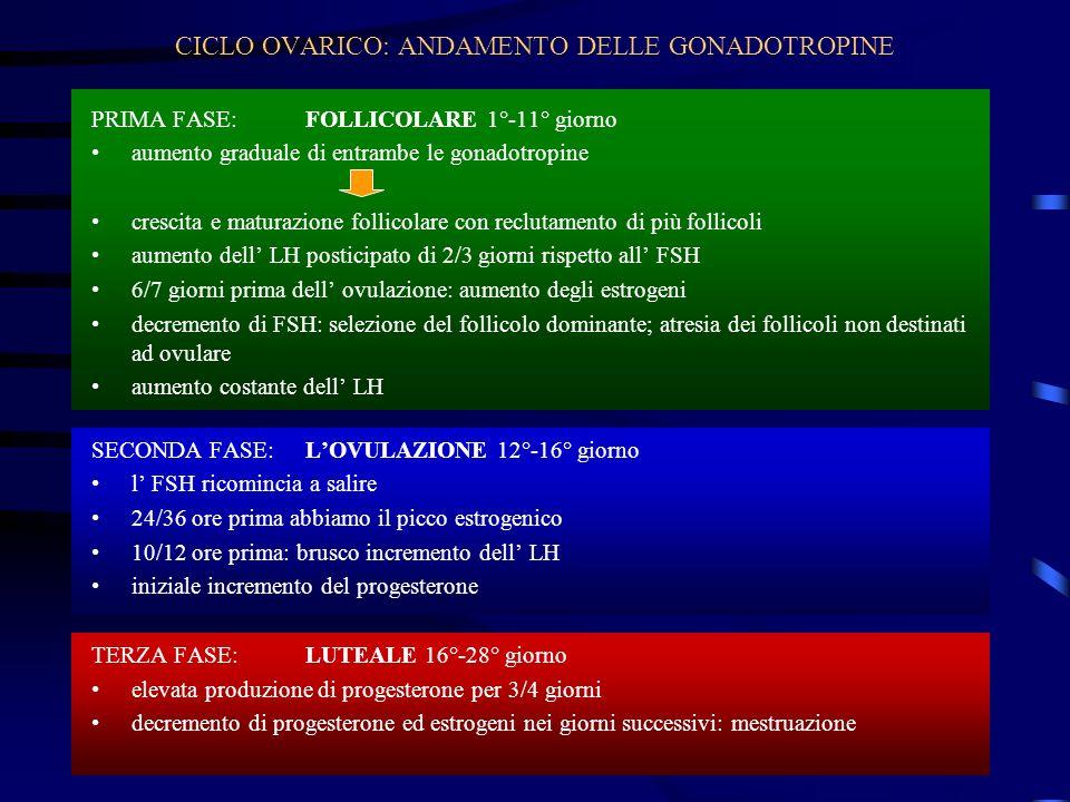 CICLO OVARICO: ANDAMENTO DELLE GONADOTROPINE