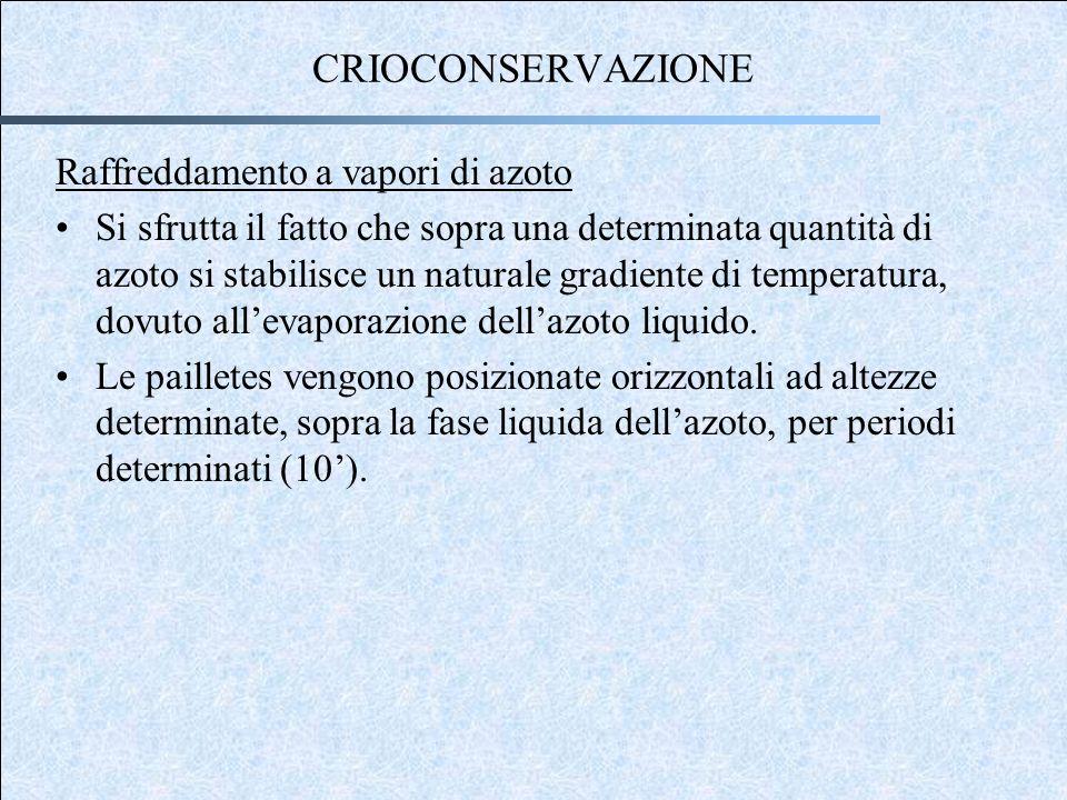CRIOCONSERVAZIONE Raffreddamento a vapori di azoto