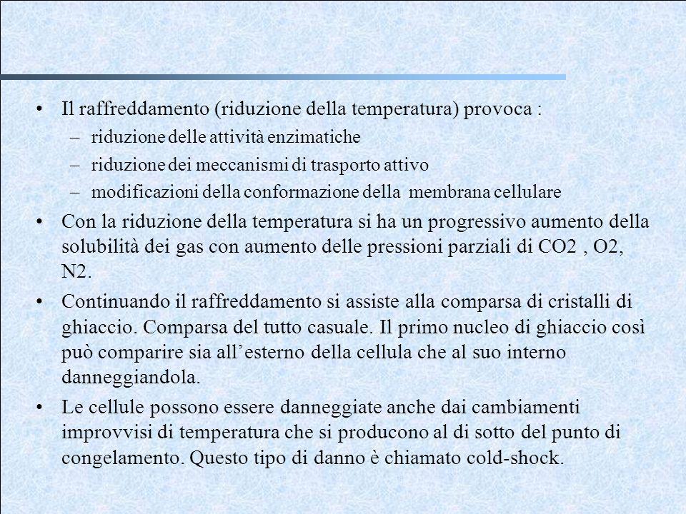 Il raffreddamento (riduzione della temperatura) provoca :