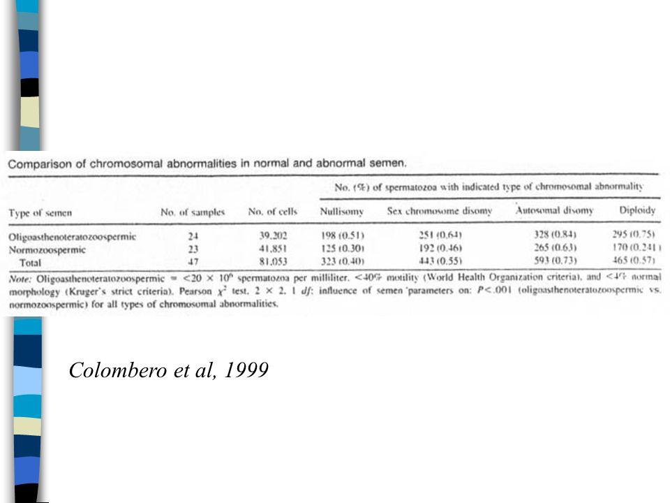 Colombero et al, 1999