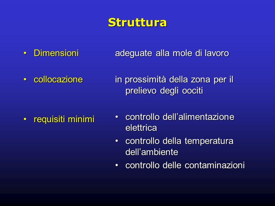 Struttura Dimensioni collocazione requisiti minimi