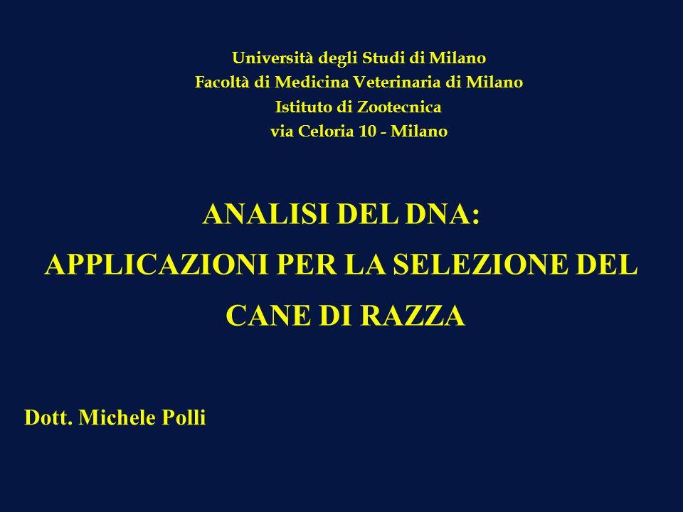 ANALISI DEL DNA: APPLICAZIONI PER LA SELEZIONE DEL CANE DI RAZZA