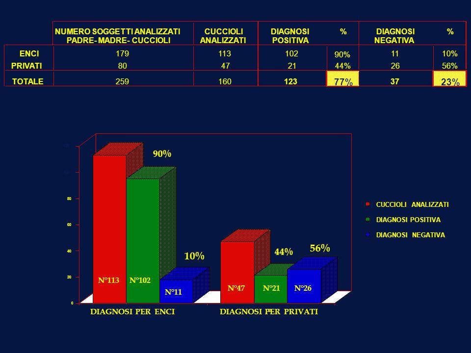 56% 10% 77% 23% 90% 44% NUMERO SOGGETTI ANALIZZATI CUCCIOLI DIAGNOSI %