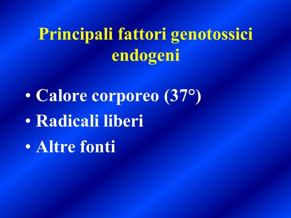 Principali fattori genotossici endogeni