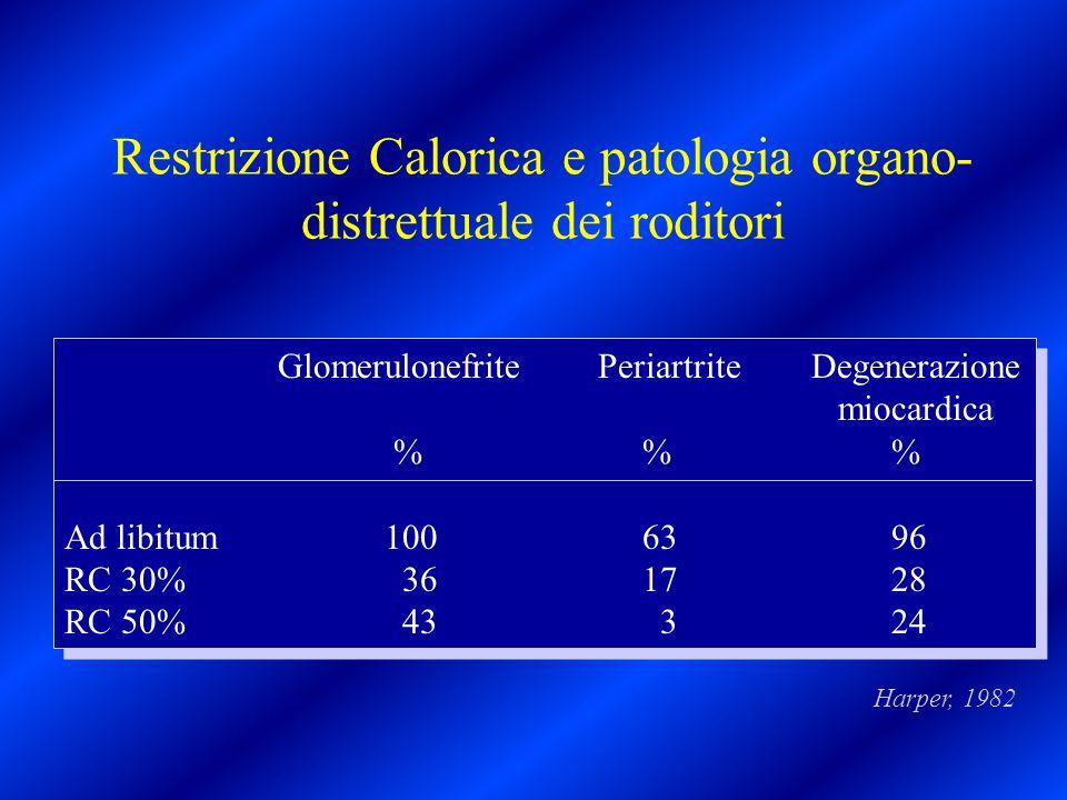Restrizione Calorica e patologia organo-distrettuale dei roditori