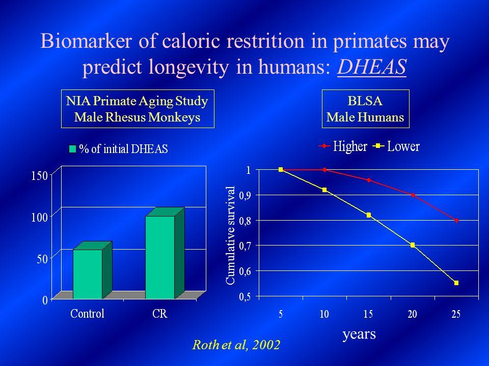 NIA Primate Aging Study