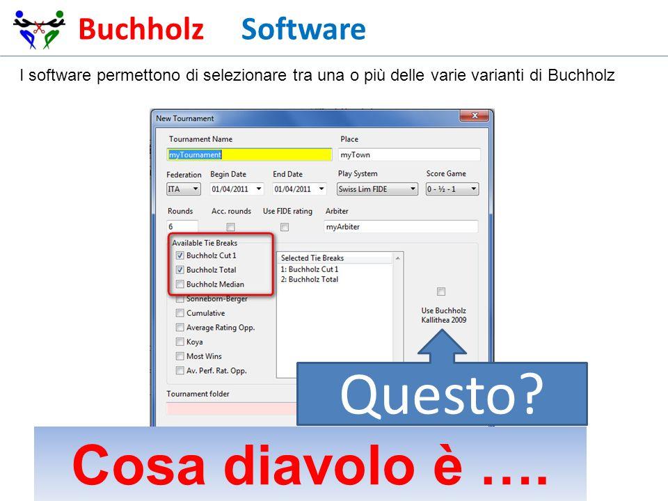 Questo Cosa diavolo è …. Buchholz Software