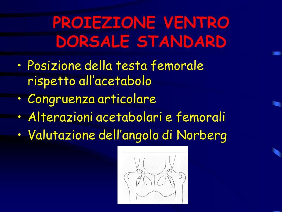 PROIEZIONE VENTRO DORSALE STANDARD
