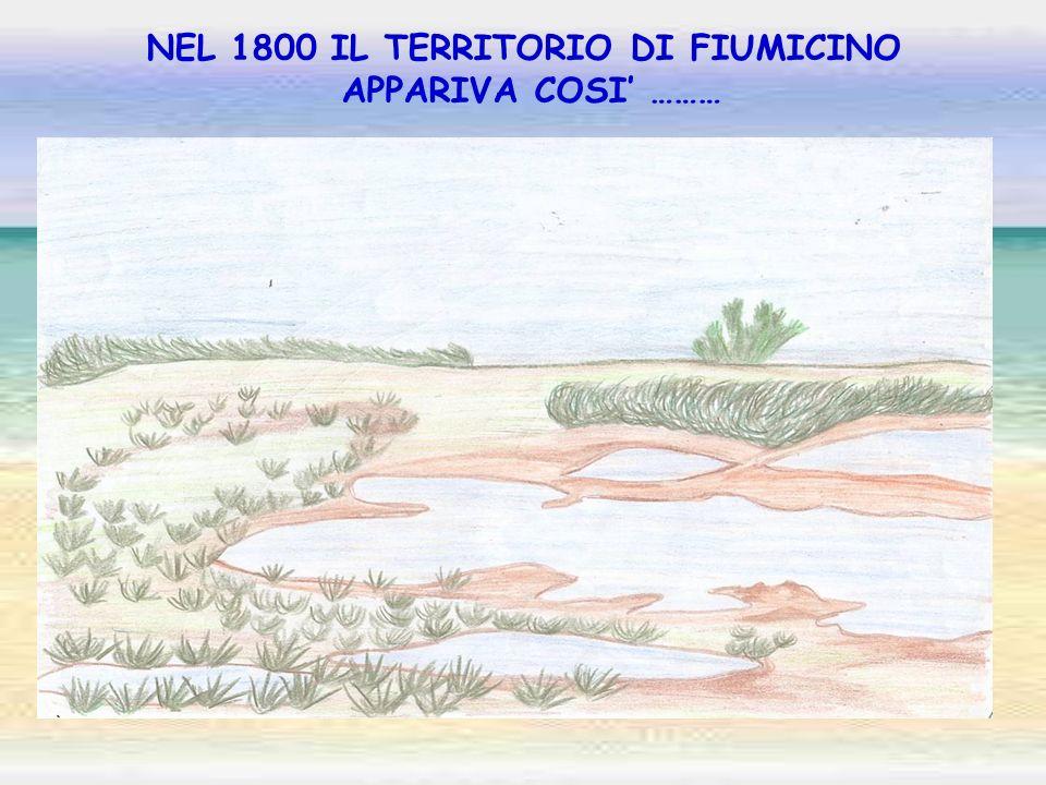 NEL 1800 IL TERRITORIO DI FIUMICINO