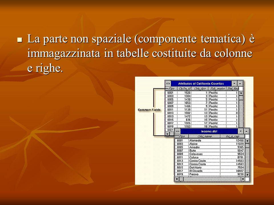La parte non spaziale (componente tematica) è immagazzinata in tabelle costituite da colonne e righe.