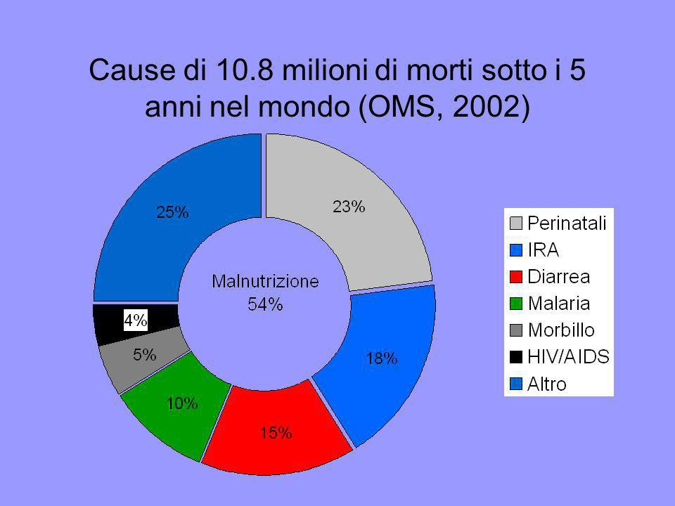 Cause di 10.8 milioni di morti sotto i 5 anni nel mondo (OMS, 2002)