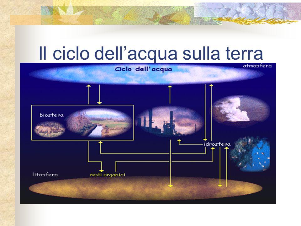 Il ciclo dell'acqua sulla terra