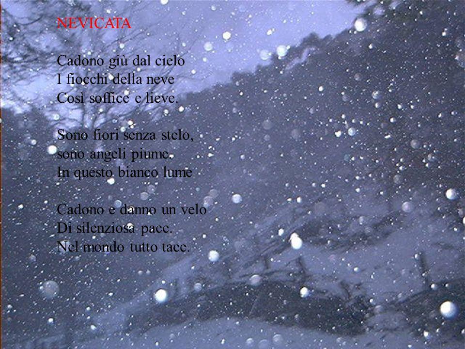 NEVICATA Cadono giù dal cielo. I fiocchi della neve. Così soffice e lieve. Sono fiori senza stelo,