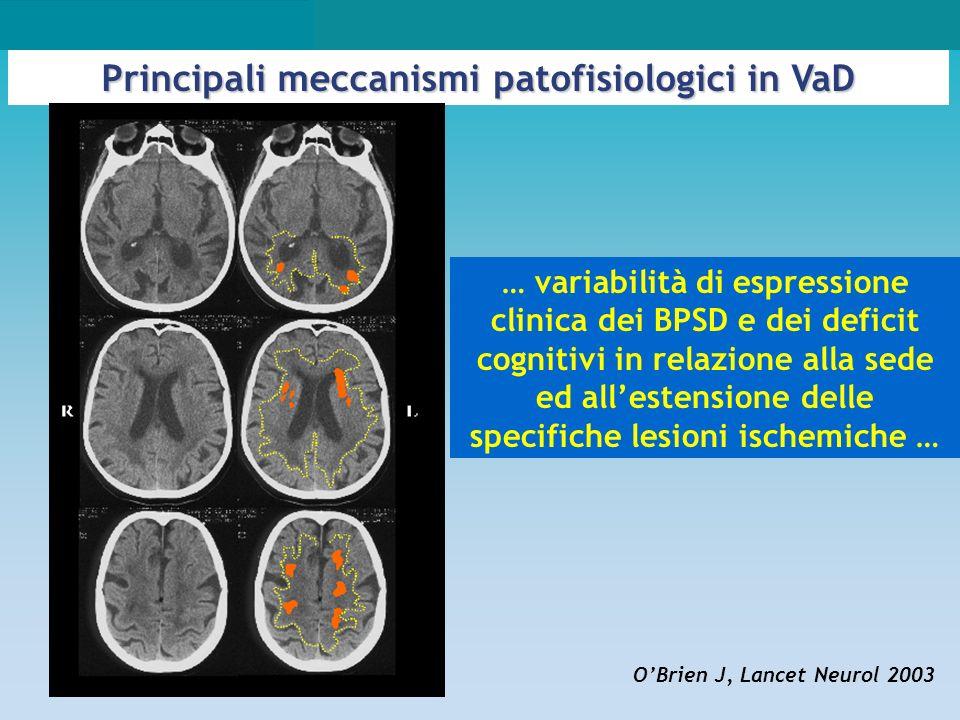 Principali meccanismi patofisiologici in VaD