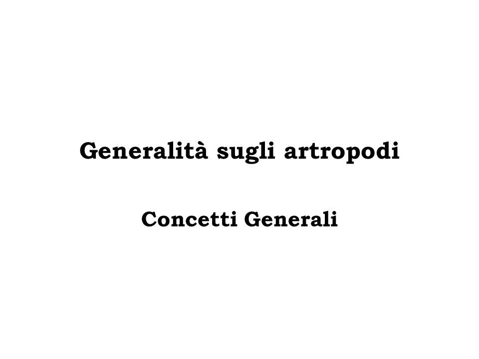 Generalità sugli artropodi