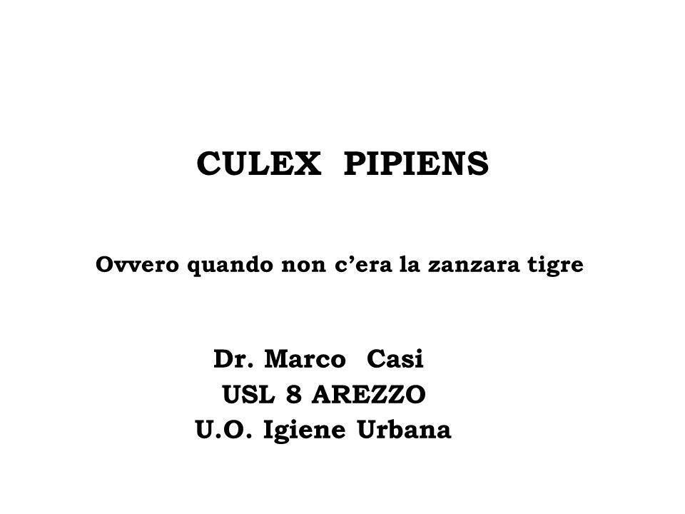CULEX PIPIENS Ovvero quando non c'era la zanzara tigre Dr. Marco Casi