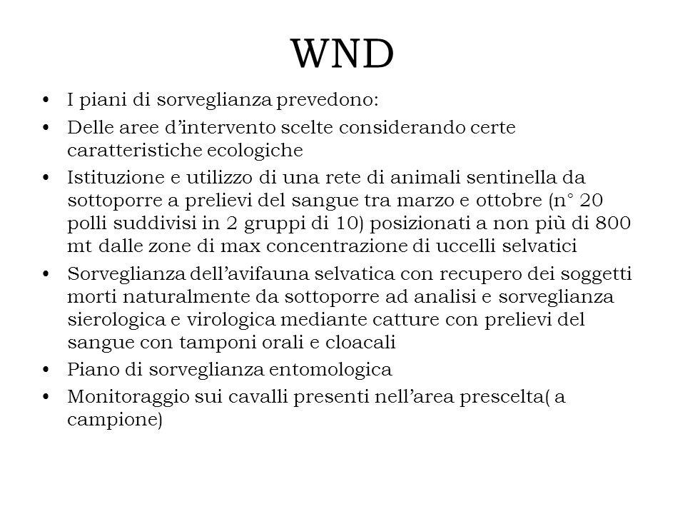 WND I piani di sorveglianza prevedono: