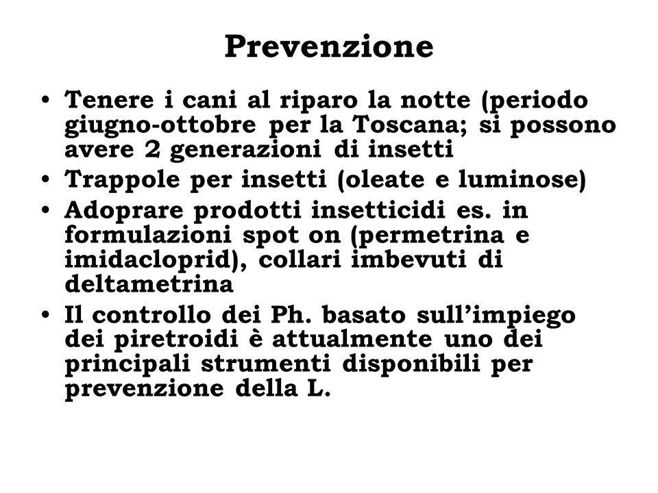 Prevenzione Tenere i cani al riparo la notte (periodo giugno-ottobre per la Toscana; si possono avere 2 generazioni di insetti.