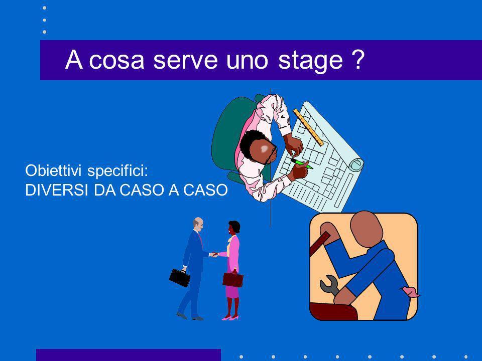 A cosa serve uno stage Obiettivi specifici: DIVERSI DA CASO A CASO