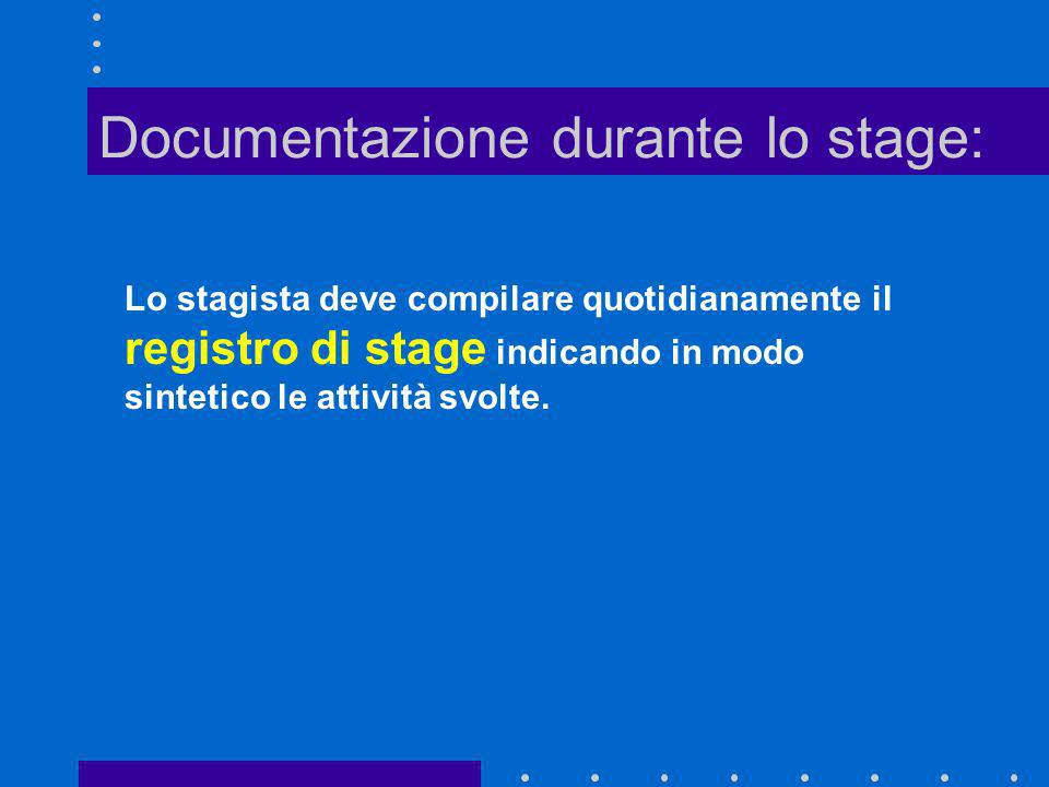 Documentazione durante lo stage: