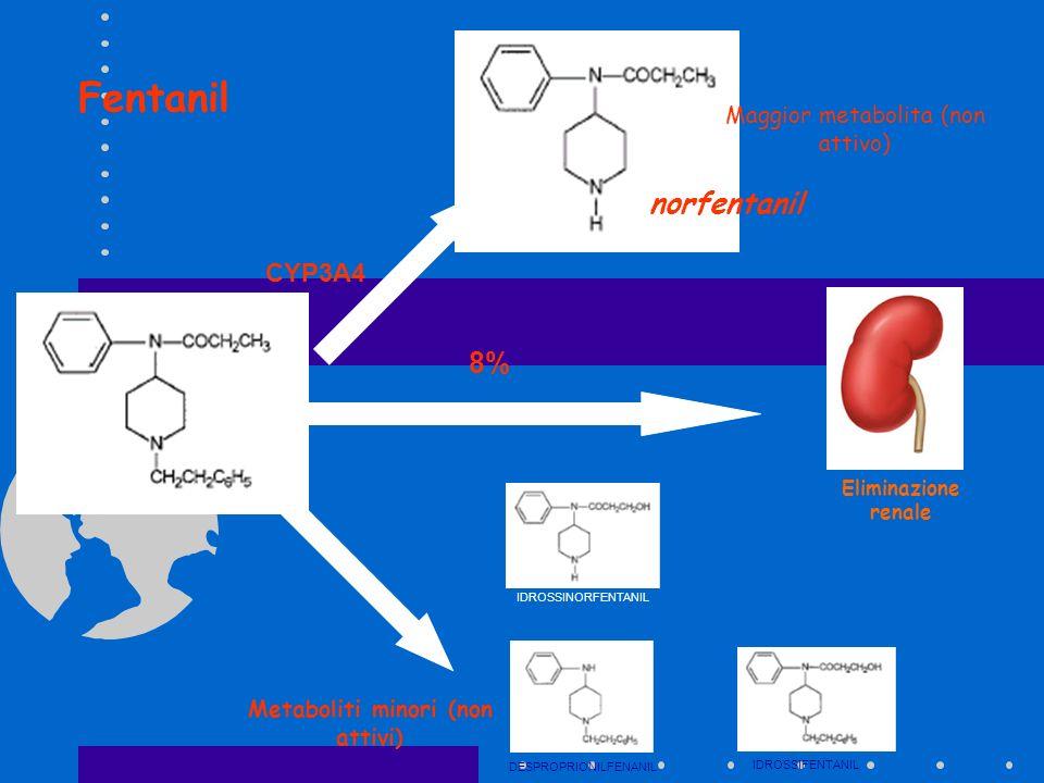 Metaboliti minori (non attivi)