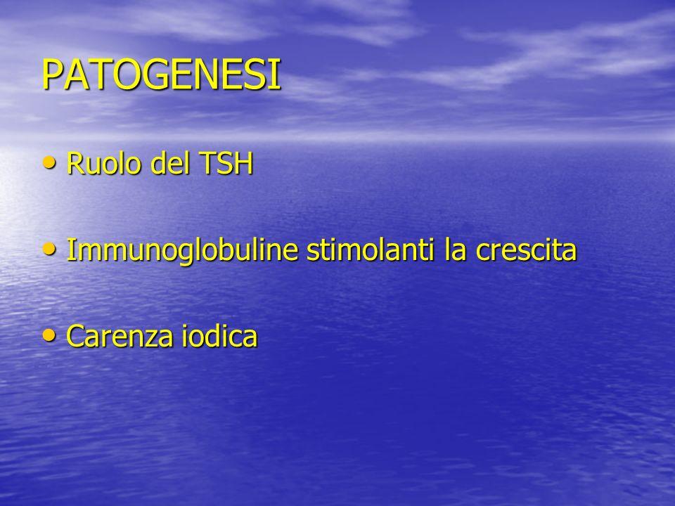 PATOGENESI Ruolo del TSH Immunoglobuline stimolanti la crescita