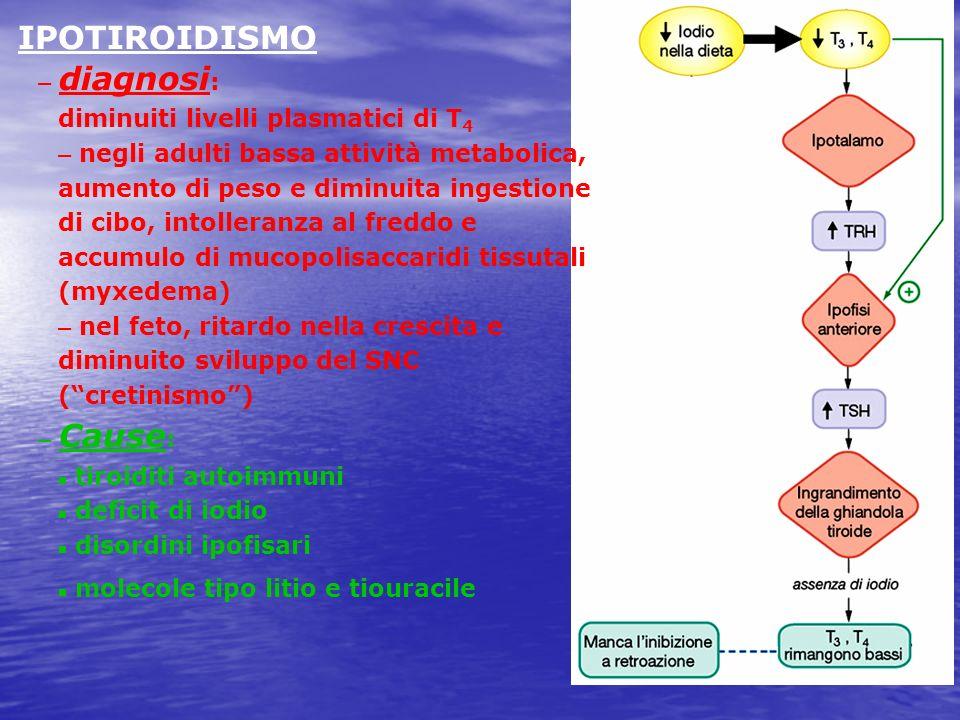 IPOTIROIDISMO diagnosi: diminuiti livelli plasmatici di T4