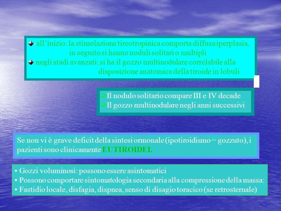 -all'inizio: la stimolazione tireotropinica comporta diffusa iperplasia,