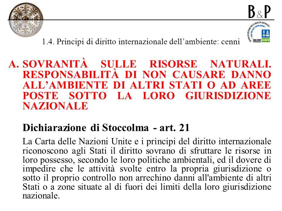 1.4. Principi di diritto internazionale dell'ambiente: cenni