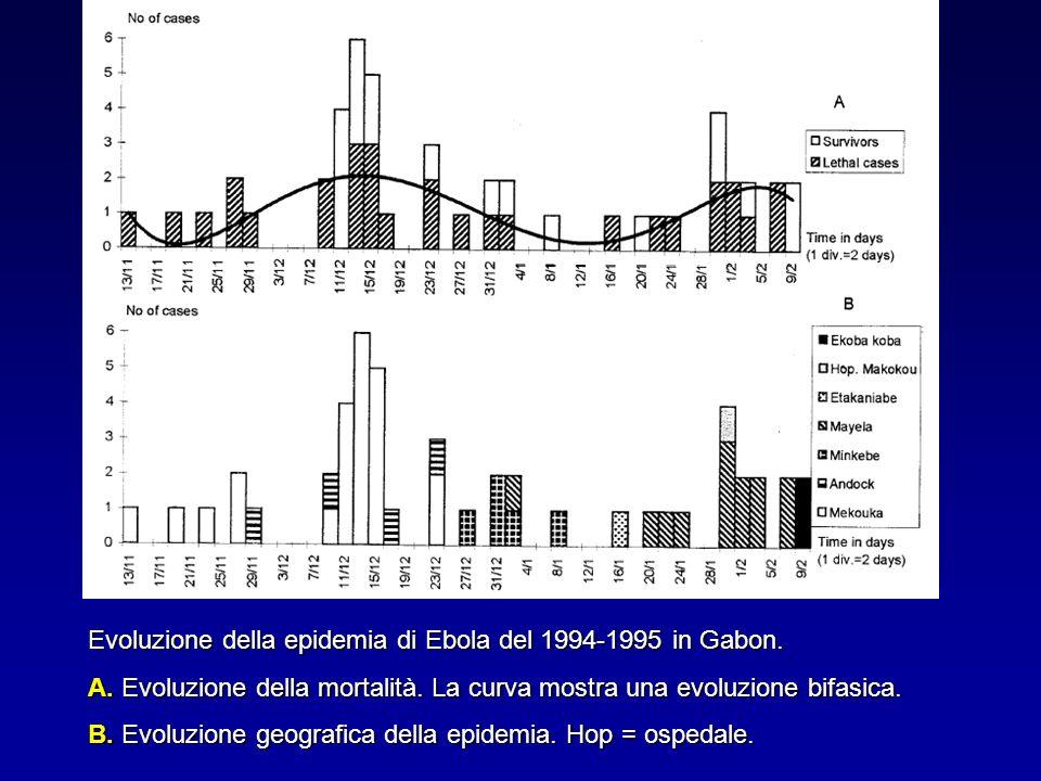 Evoluzione della epidemia di Ebola del 1994-1995 in Gabon.