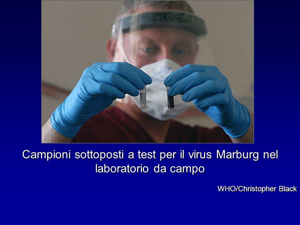 Campioni sottoposti a test per il virus Marburg nel laboratorio da campo