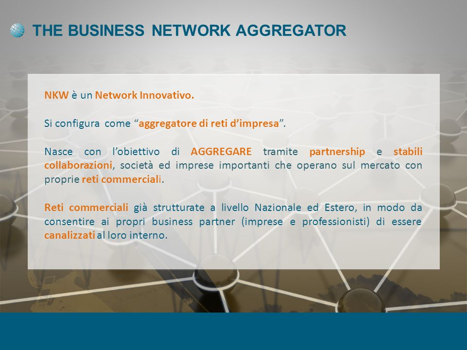 THE BUSINESS NETWORK AGGREGATOR