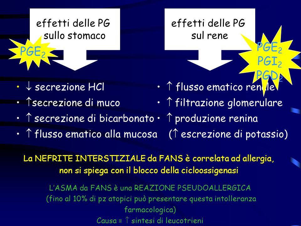 PGE2 PGI2 PGD2 PGE2 effetti delle PG sullo stomaco effetti delle PG