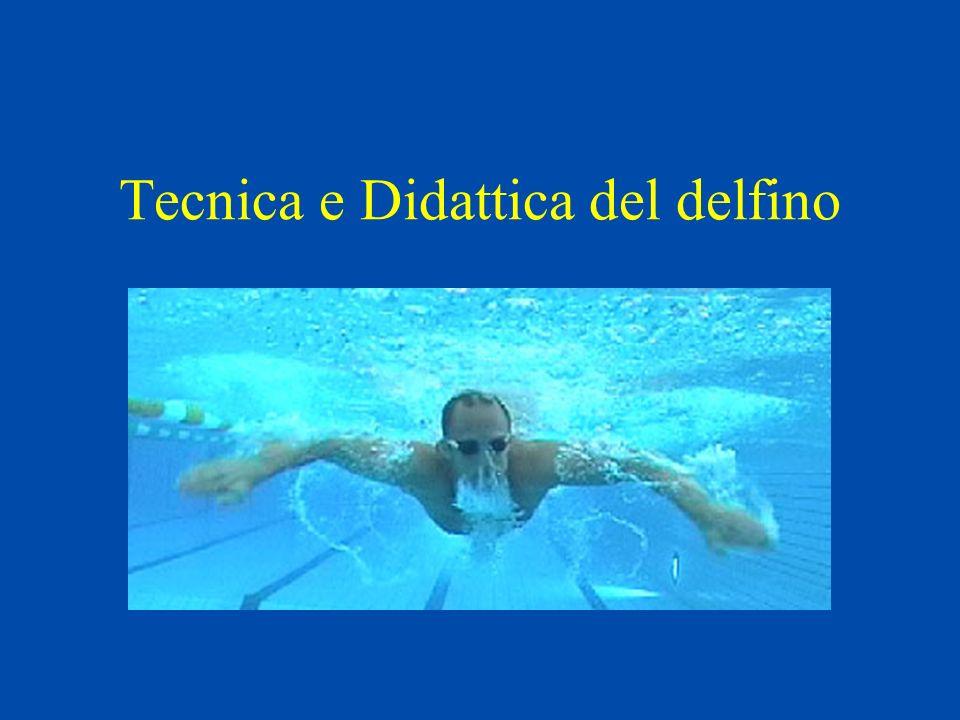 Tecnica e Didattica del delfino