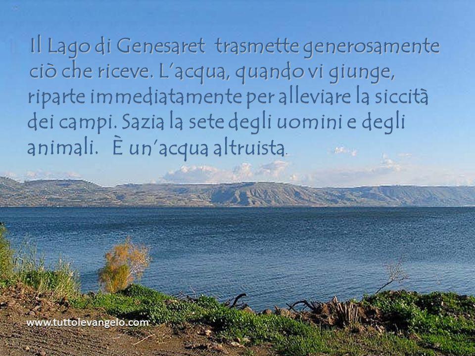 Il Lago di Genesaret trasmette generosamente ciò che riceve